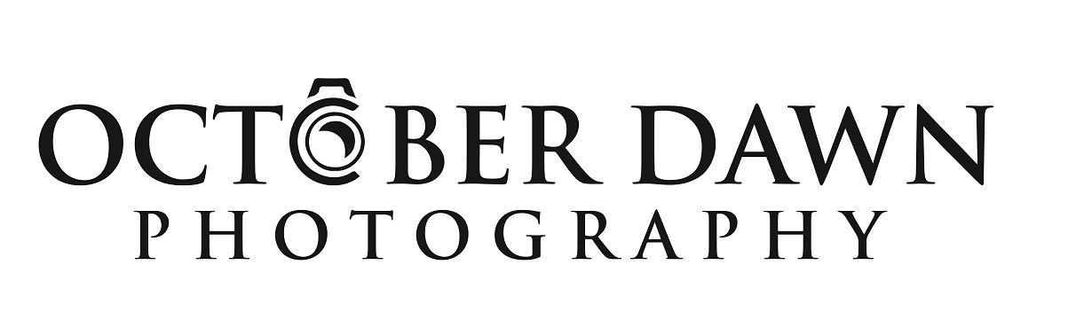 Blueberriedawn logo